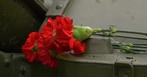Haubits och nejlika Nejlikan blommar symbol av sorg close upp lager videofilmer