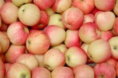 Haufen der Äpfel Stockfoto