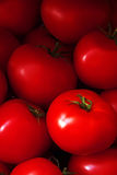 Haufen der Tomaten Lizenzfreie Stockfotos