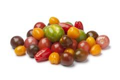 Haufen der unterschiedlichen Art Tomaten Stockbilder