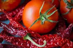 Haufen des bunten Rotes trocknete Pfeffer des scharfen Paprikas auf dunklem konkretem Hintergrund, die Tomate und kochte, Gewürze Lizenzfreie Stockfotografie