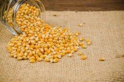 Haufen des getrockneten Maissamens auf Sacktasche lizenzfreie stockfotografie