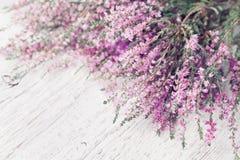 Haufen rosa Heideblume Calluna gemein, Heidekraut, Heidekraut auf weißer rustikaler Tabelle Grußkarte für Mutter- oder Frauentag Stockbild