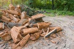 Haufen von alten gefällten Baumstümpfen am Rand des Waldes Stockbild