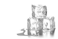 Haufen von drei schmelzenden Eiswürfeln mit Wasser und Reflexion Lizenzfreies Stockbild