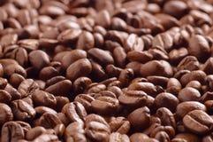 Haufen von Röstkaffeebohnen vom Weiche des niedrigen Winkels fokussiert Stockbilder