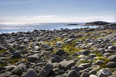 Haugesund i Norge Royaltyfri Fotografi