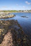 Haugesund in Norwegen Stockbild