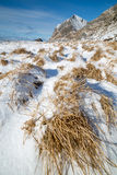 Haukland beach, Lofoten islands, Norw Royalty Free Stock Photography