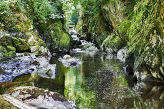 Haunted Fairy Glen Betws-y-coed Royalty Free Stock Images