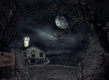 Haunted house with vulture waiting Stock Images