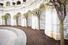 Hauptbäume Lizenzfreies Stockbild