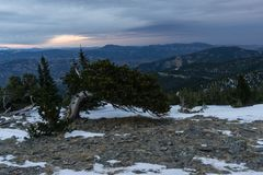 Hauptberg - Colorado lizenzfreie stockfotos