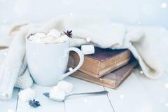 Haupthintergrund des gemütlichen Winters Lizenzfreies Stockbild