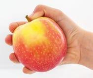 Hauptholding ein roter und gelber Apfel stockfoto
