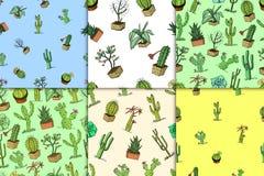 Hauptkaktuspflanzen mit den Kribbeln und den Naturelementen in den Töpfen und in den Blumen exotisch oder tropisch verschiedene S stock abbildung