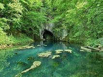 Hauptquelle kommt von der Höhle Stockfotos