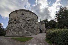 Hauptstadt von Estland Lizenzfreie Stockbilder