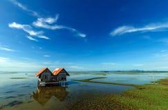 Hauptwasser Lizenzfreie Stockbilder