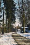 Hauptweg durch das forrest von St. poelten in der Wintersaison Lizenzfreie Stockbilder