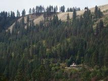 Haus auf bewaldetem Berg Stockbilder