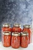 Haus in Büchsen konservierte Gläser selbst gemachte Salsa Stockfoto