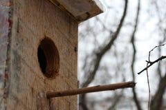 Haus, das auf seine Vögel wartet lizenzfreies stockbild