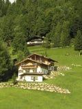 Haus in den Alpen lizenzfreie stockfotos