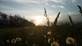 Haus in den Bergen Ansicht von unten durch das Gras das Einflüsse Das Konzept des Entspannung und der Erholung Schöner Sonnenunte stock footage