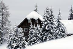 Haus in den Weihnachtsbäumen Lizenzfreies Stockbild