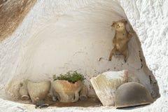 Haus der Berbers nach innen in Tunesien lizenzfreies stockbild