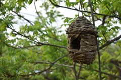 Haus für Vögel stockfoto