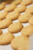 Haus gebackene ameretti Kekse auf Backblech Lizenzfreie Stockfotografie