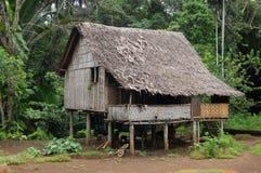 Haus im Dorf Papua-Neu-Guinea lizenzfreies stockfoto