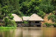 Haus im Dschungel Stockbild