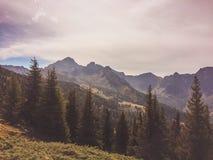 Haus im Ennstal, Steiermark/Österrike - September 2016: sikter under en bergvandring arkivfoto