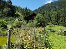 Haus im grünen Berg stockbild