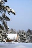 Haus im Holz Lizenzfreie Stockfotografie