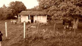 Haus im Lager Stockfoto