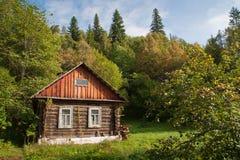 Haus im Wald Lizenzfreie Stockfotografie