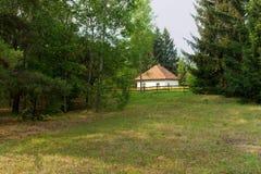 Haus im Wald Stockbild