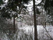 Haus im Winterwald Lizenzfreie Stockfotos