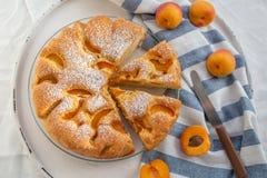 Haus machte Aprikosenschwammkuchen Stockfotos