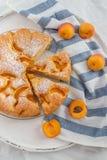 Haus machte Aprikosenschwammkuchen Stockbild