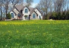 Haus mit Feld Stockfotografie