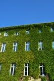 Haus mit grünen Wänden lizenzfreie stockfotografie