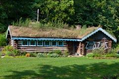 Haus mit Grasscholle-Dach lizenzfreies stockbild