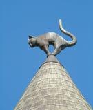Haus mit Katzen in Riga Lizenzfreie Stockfotos