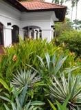 Haus mit natürlicher landschaftlich verschönernauslegung Lizenzfreies Stockfoto