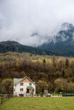 Haus nahe Wald Stockfotografie